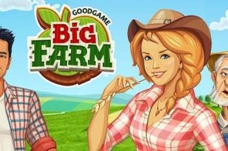 bigfarm-pochette