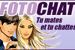 foto chat gratuit